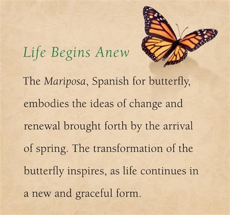 Pin by James Avery Artisan Jewelry on butterflies