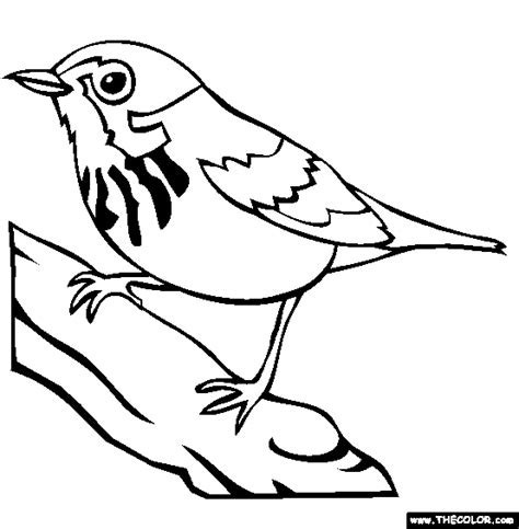 Bird Online Coloring Pages | Page 1