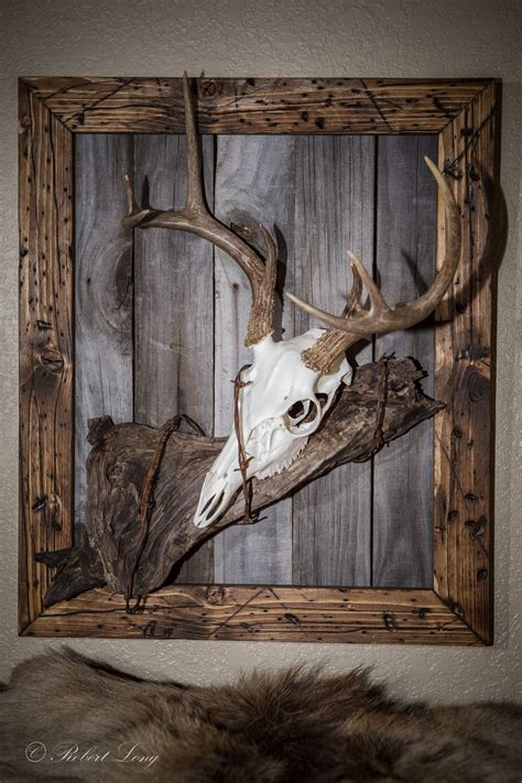 My second european deer mount that I made to match my
