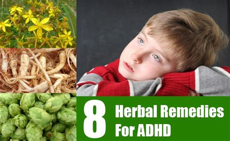 8 Best Herbal Remedies for ADHD - Treat & Cure ADHD