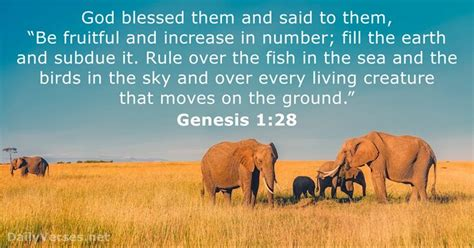 July 25, 2017 - Bible verse of the day - Genesis 1:28