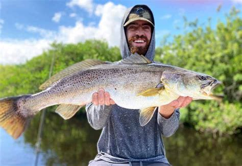 Positively awesome large Speckled Trout landed on Indian River